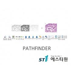 페스파인더 프로그램 [PATHFINDER]
